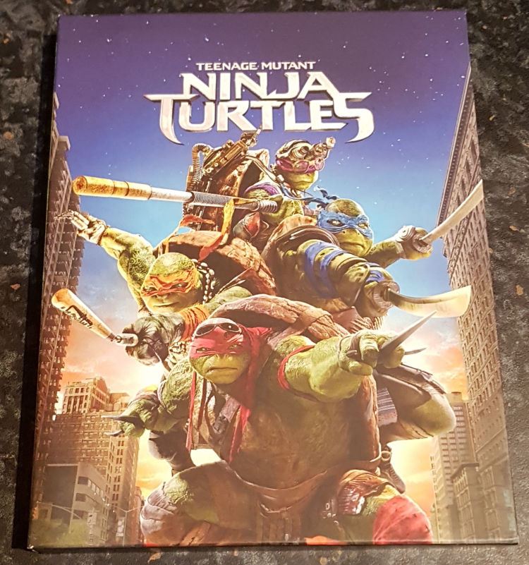 turtles_1_1a